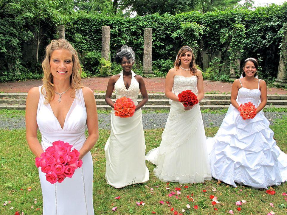 Wer feiert die perfekte Hochzeit? (v.l.n.r.) Kati, Tara, Editza oder Alana? - Bildquelle: 2011 Discovery Communications, LLC