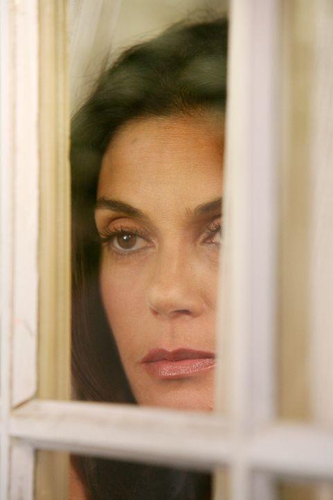 Susan (Teri Hatcher) versucht sich mit dem neuen schwulen Pärchen, Lee und Bob, anzufreunden, tritt dabei jedoch in ein fulminantes Fettnäpfchen ... - Bildquelle: ABC Studios