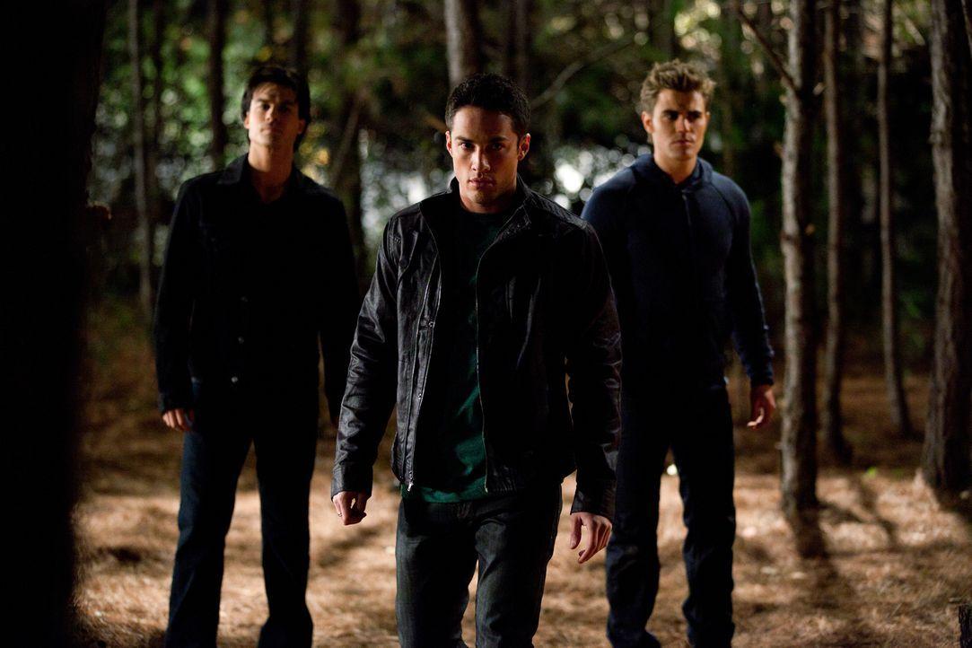Vampire gegen Werwölfe: Wird sich Tyler (Michael Trevino, M.) auf die Seite von den Vampirbrüdern Damon (Ian Somerhalder, l.) und Stefan Salvatore (... - Bildquelle: Warner Brothers