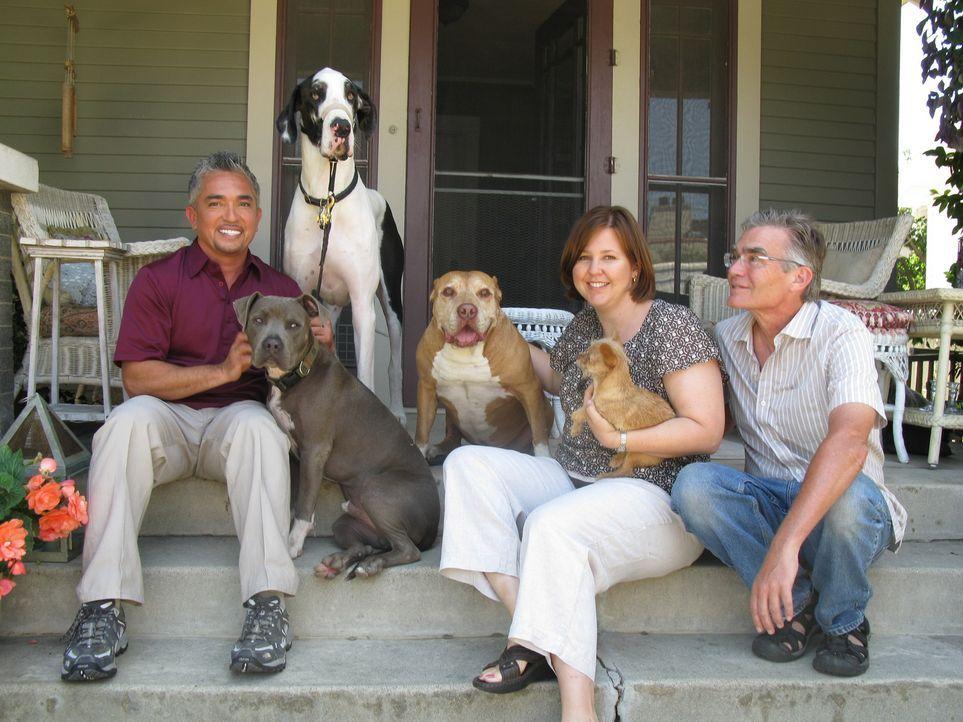 Familie Moore hat große Probleme mit ihrer 65 Kilo schweren Deutschen Dogge Bacchus. Kann der Hundeflüsterer Cesar Millan (l.) helfen? - Bildquelle: Rive Gauche Intern. Television
