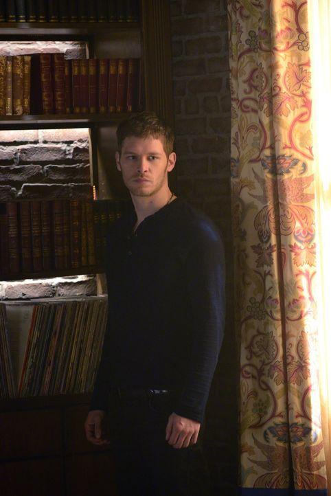 Klaus (Joseph Morgan) gibt vor, den Werwölfen helfen zu wollen, doch welche Vorteile kann Klaus daraus ziehen? - Bildquelle: Warner Bros. Television