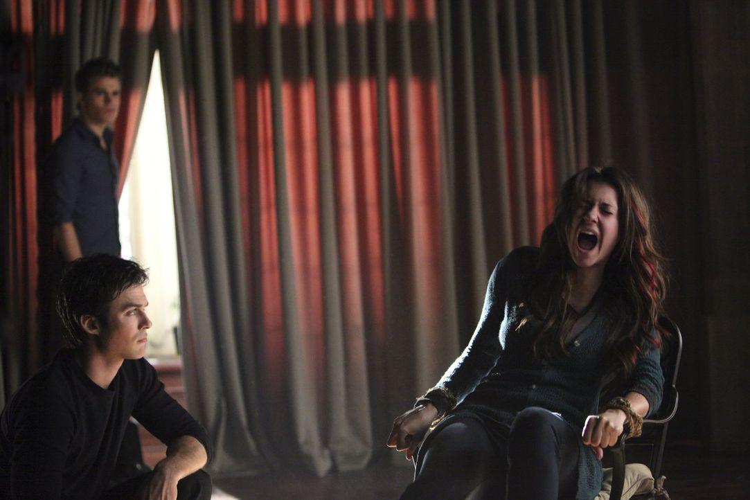 Wird es Damon (Ian Somerhalder, vorne l.) und Stefan (Paul Wesley, hinten l.) gelingen, den eiskalten Vampir aus Elena (Nina Dobrev, r.) auszutreiben? - Bildquelle: Warner Brothers