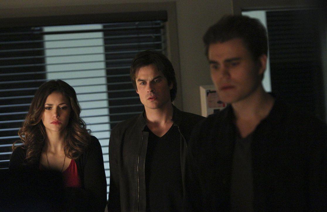 Das Verhältnis zwischen Stefan, Elena und Damon ist kompliziert - Bildquelle: Warner Bros. Entertainment Inc.