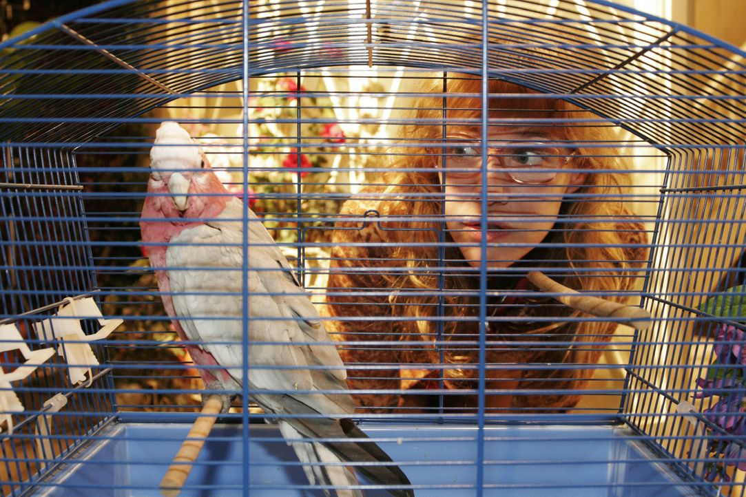 Als Lisa (Alexandra Neldel) den verstörten Vogel anblickt, weiß sie, wie dumm es ist, diesem die Schuld an dem Unfall zu geben ... (Dieses Foto von... - Bildquelle: Noreen Flynn SAT.1 / Noreen Flynn