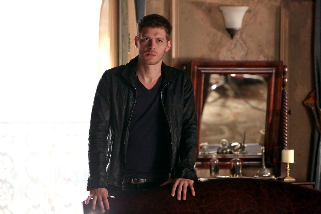 Noch immer wissen Klaus (Joseph Morgan) und Elijah nicht, wie mächtig ihre Mutter wirklich ist ... - Bildquelle: Warner Bros. Television