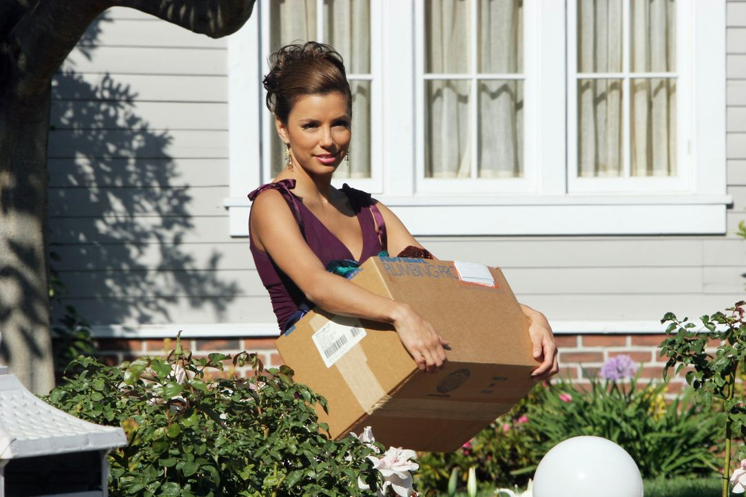 Freut sich auf ein Picknick mit ihrem neuen Freund: Gabrielle (Eva Longoria) ... - Bildquelle: 2005 Touchstone Television  All Rights Reserved