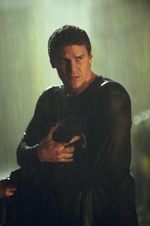 Angel (David Boreanaz) hält seinen neugeborenen Sohn in den Armen, der unter katastrophalen Umständen auf die Welt kam. - Bildquelle: 20th Century Fox. All Rights Reserved.