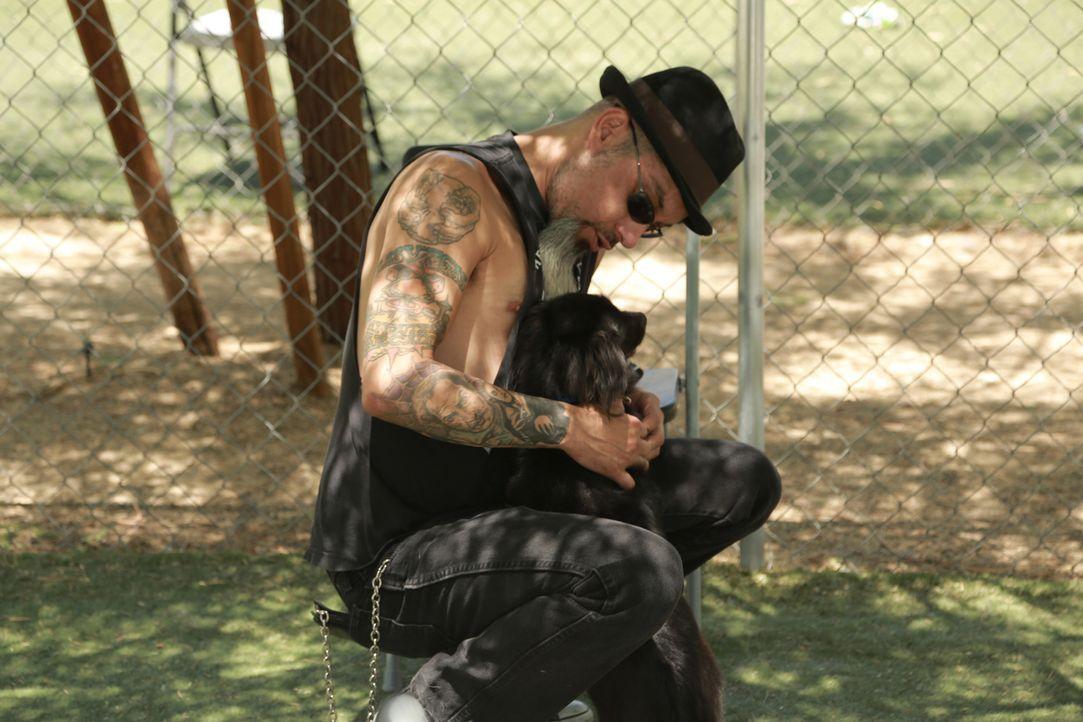 Für Ruckus (Bild) und Dirk gibt es in Las Vegas einige Tattoo-Fails zu sehen ... - Bildquelle: 2013 A+E Networks, LLC