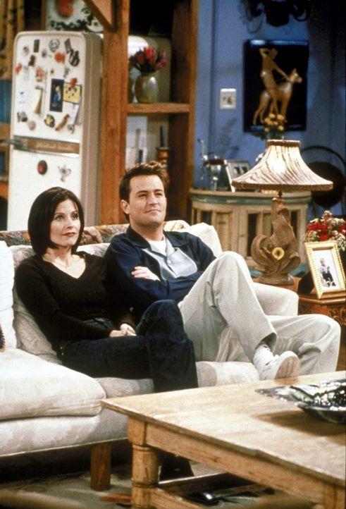 Monica (Courteney Cox, l.) wird einfach verrückt in ihrer neuen Wohnung und will deshalb unbedingt in die alte Wohnung zurück, doch Chandler (Matt... - Bildquelle: TM+  2000 WARNER BROS.