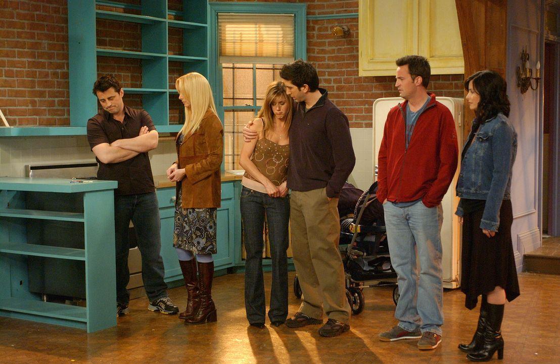 Für Ross (David Schwimmer, 3.v.r.), Rachel (Jennifer Aniston, 3.v.l.), Monica (Courteney Cox, r.), Chandler (Matthew Perry, 2.v.r.), Joey (Matt LeBl... - Bildquelle: 2003 Warner Brothers International Television