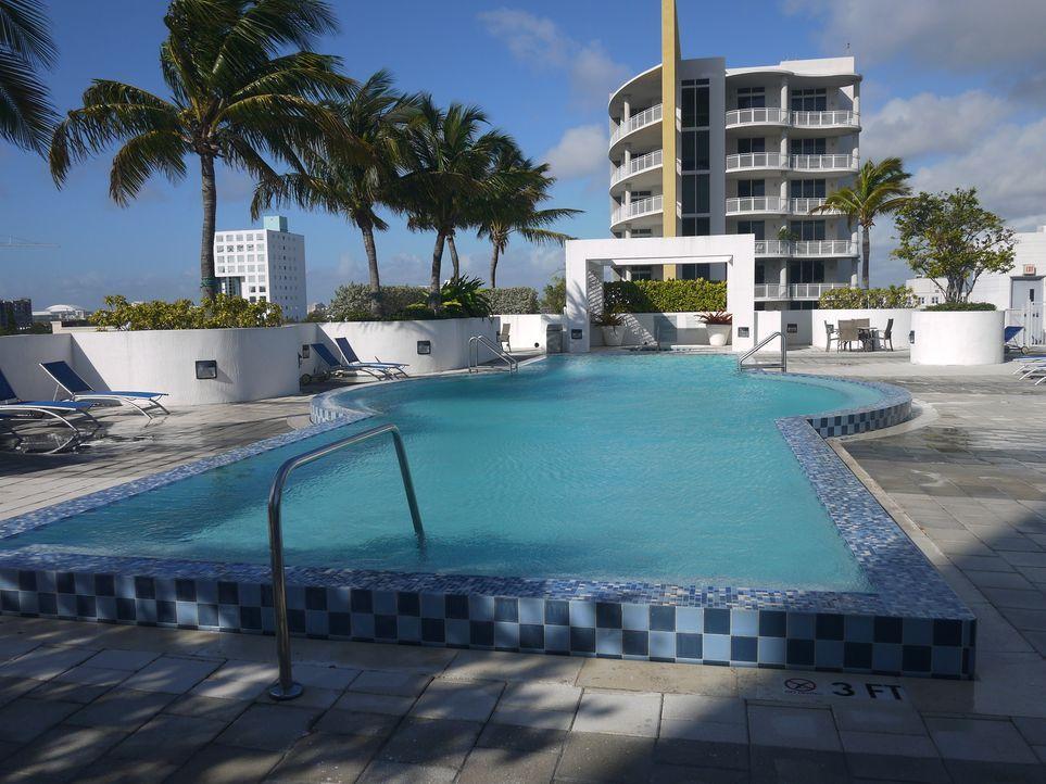 Ein luxuriöses Domizil mit Meerblick in Miami für unter $300.000 - ist das möglich? Tania hofft darauf, dass ihre gute Freundin und Maklerin Alexand... - Bildquelle: 2014, HGTV/Scripps Networks, LLC. All Rights Reserved.