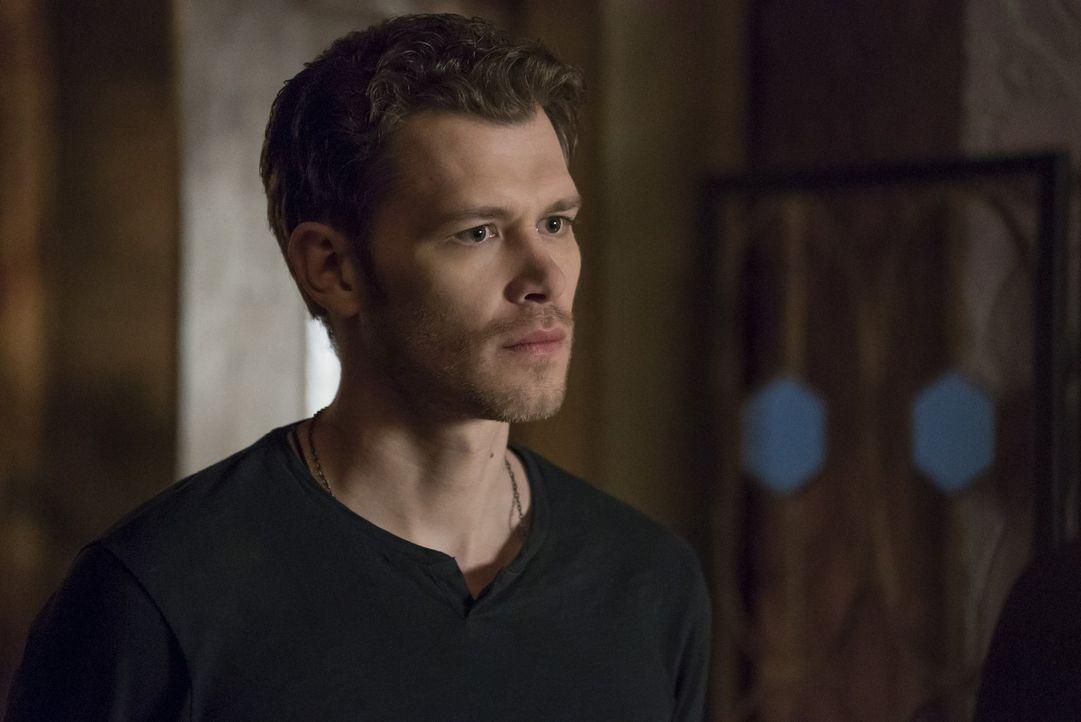 Während Klaus (Joseph Morgan) alles daransetzt, einen Totem des Hollows zu finden und zu zerstören, soll Kol ausgerechnet dafür sorgen, dieses Totem... - Bildquelle: 2016 Warner Brothers