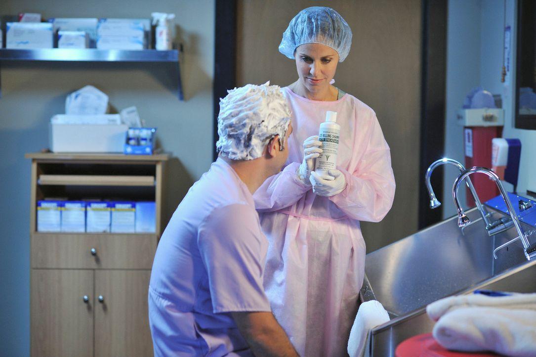 Obwohl Violet (Amy Brenneman, r.) sauer auf Cooper (Paul Adelstein, l.) ist, da er sie belogen hat, hilft sie ihm, die Läuse, die ihn befallen haben... - Bildquelle: ABC Studios