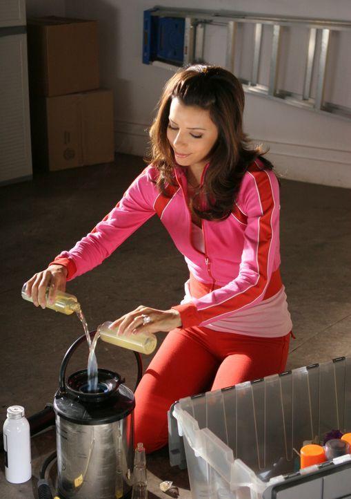 Nachdem Carlos und Gabrielle (Eva Longoria) erfahren haben, dass Xiao-Mei schwanger ist, setzt Carlos Xiao-Meis Bedürfnisse an erste Stelle. Doch Ga... - Bildquelle: 2005 Touchstone Television  All Rights Reserved