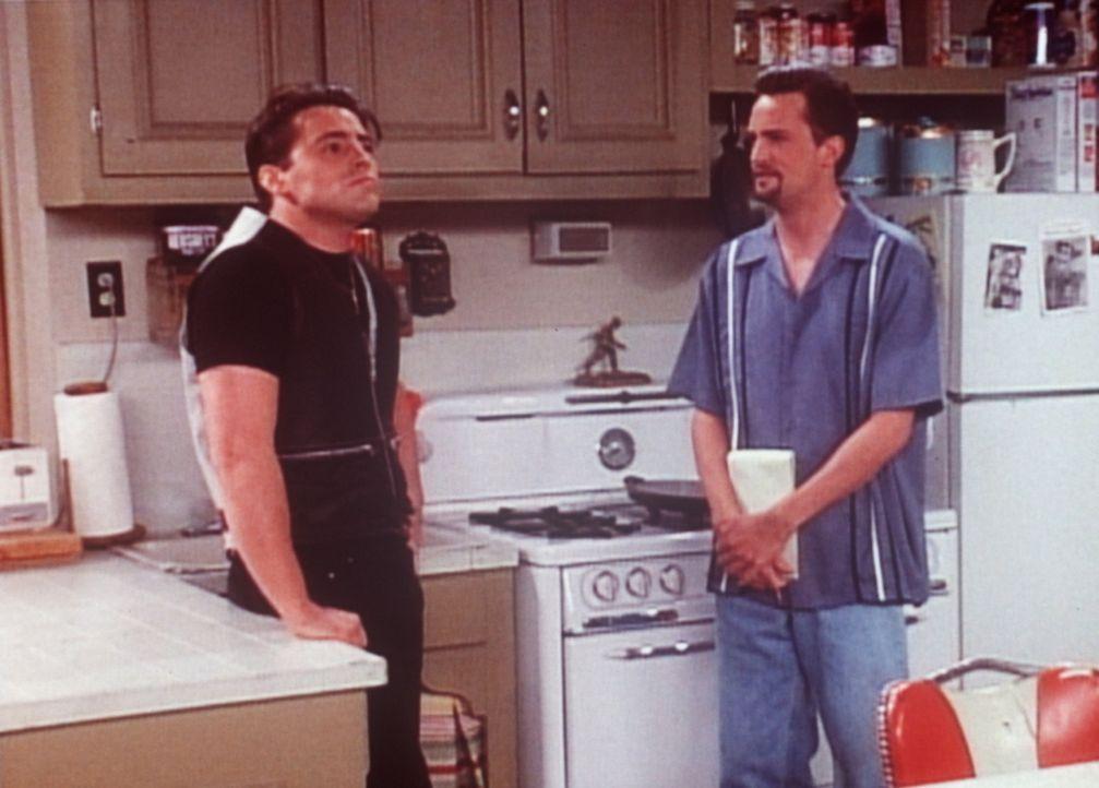 Joey (Matt LeBlanc, l.) bewirbt sich bei Chandler (Matthew Perry, r.) als Komiker. Chandler weiß nicht so recht, was er von dem Schauspieler halten... - Bildquelle: TM+  2000 WARNER BROS.