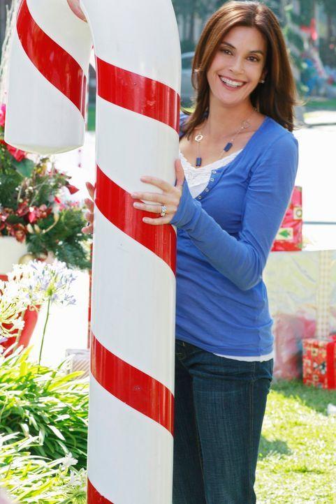 Ihre Weihnachtsstimmung wird getrübt, als Katherine behauptet, Mike hätte sie niedergestochen: Susan (Teri Hatcher) ... - Bildquelle: ABC Studios