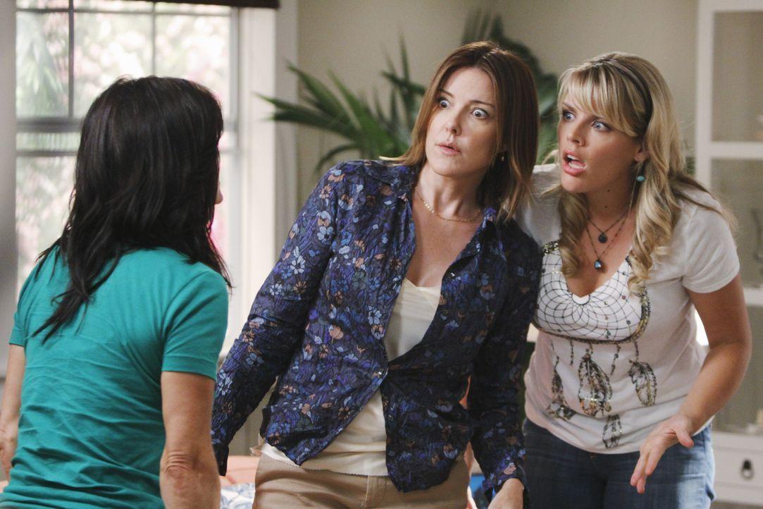 Ein 20 Jahre altes Sexvideo von Bobby und Jules (Courteney Cox, l.) sorgt bei ihr und ihren Freundinnen Ellie (Christa Miller, M.) und Laurie (Busy... - Bildquelle: 2009 ABC INC.