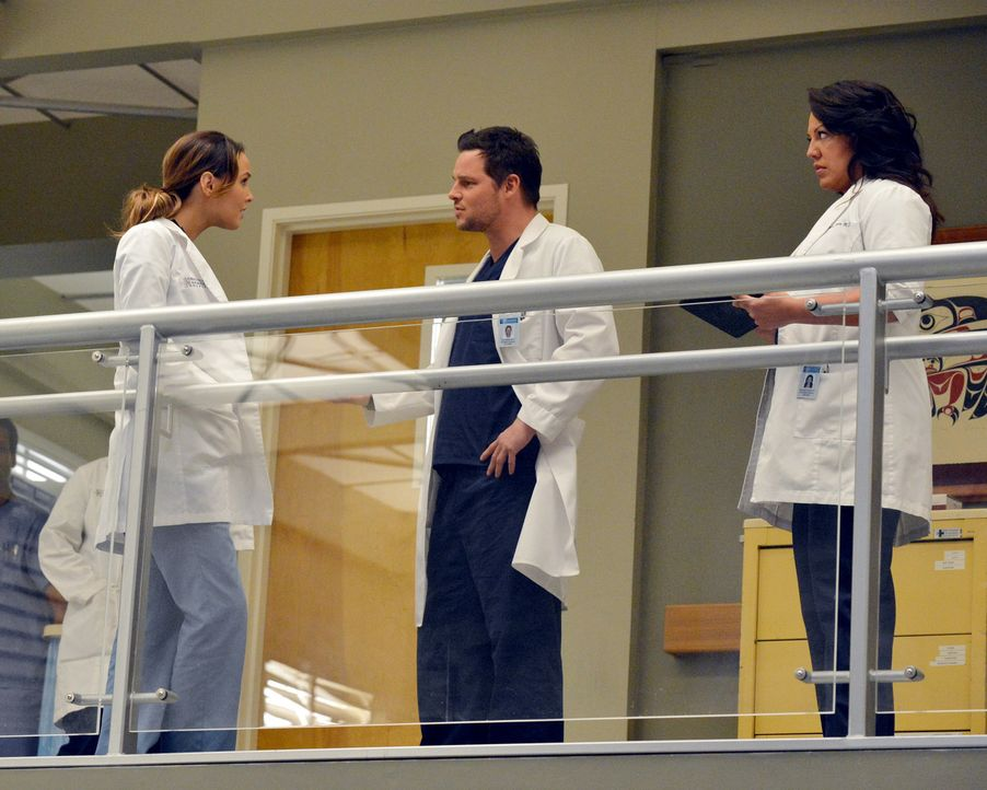 Sind von der Anti-Beziehungs-Politik im Krankenhaus alles andere als begeistert: Jo (Camilla Luddington, l.), Alex (Justin Chambers, M.) und Callie... - Bildquelle: ABC Studios
