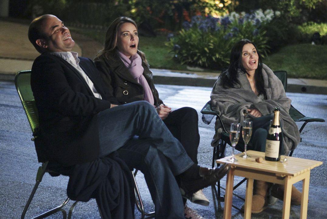 Verbringen den Valentinstag miteinander: Andy (Ian Gomez, l.), Ellie (Christa Miller, M.) und Jules (Courteney Cox, r.) ... - Bildquelle: 2010 ABC INC.