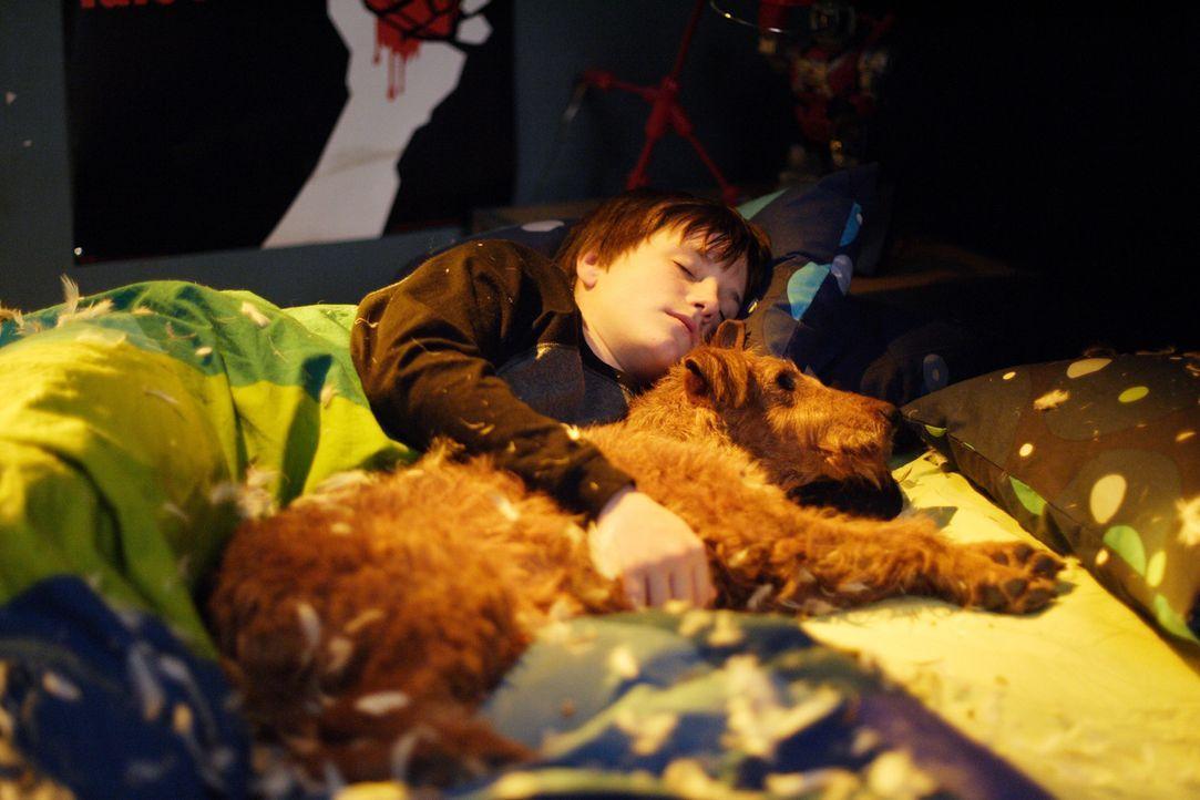 Nach anfänglichen Schwierigkeiten werden Rexx (r.) und Shane (Josh Hutcherson, l.) beste Freunde ... - Bildquelle: New Regency Productions, Inc.
