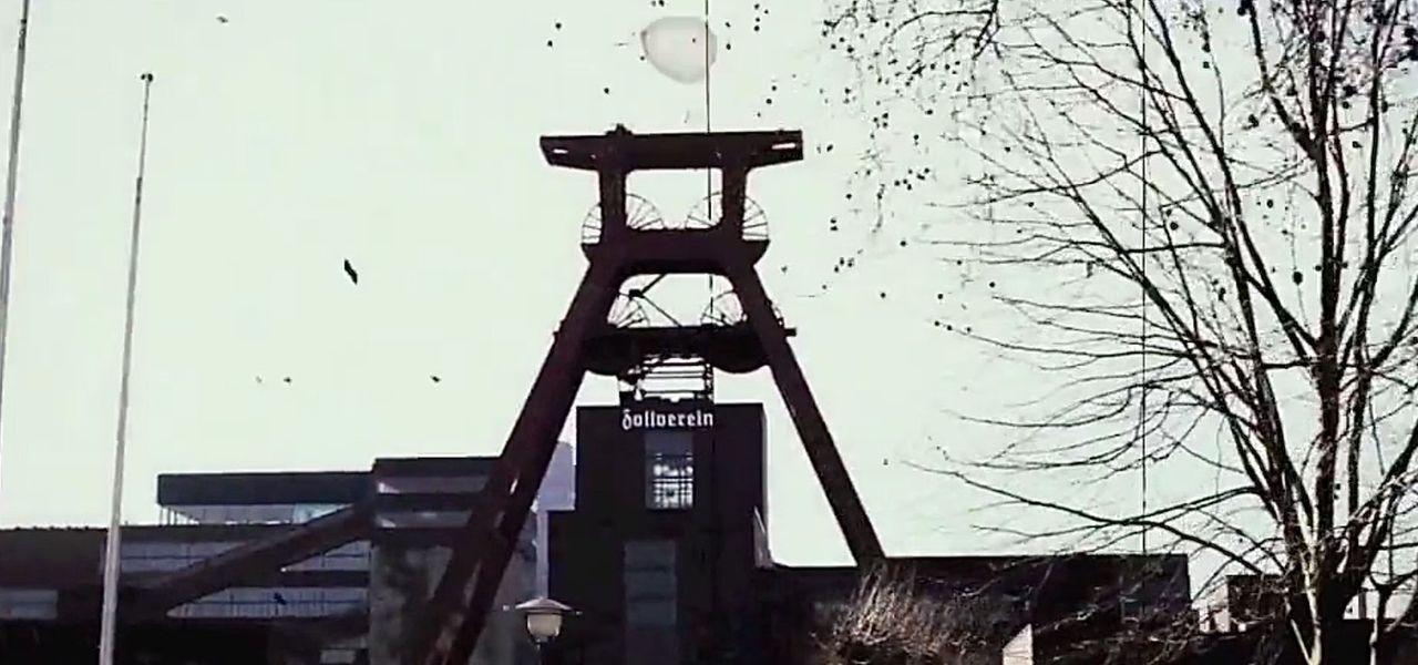Das Ruhrgebiet - sechs Millionen Menschen auf einem Haufen. Alles grau, düster und dreckig? Überhaupt nicht! ProSieben hat die buntesten Vögel und d...