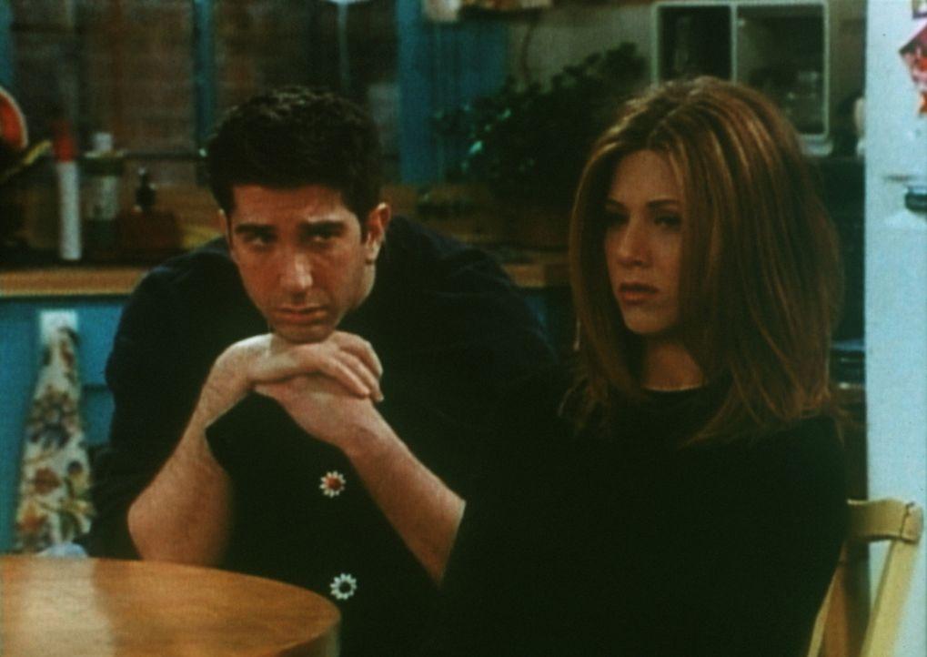 Rachel (Jennifer Aniston, r.) kann Ross (David Schwimmer, l.) den Seitensprung nicht verzeihen. - Bildquelle: TM+  2000 WARNER BROS.