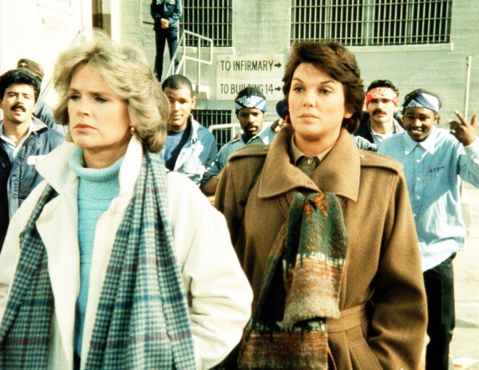 Cagney (Sharon Gless, l.) und Lacey (Tyne Daly, r.) sind entsetzt und empört. Der junge Ausreißer Dwayne ist im Gefängnis brutal vergewaltigt wor... - Bildquelle: ORION PICTURES CORPORATION. ALL RIGHTS RESERVED.