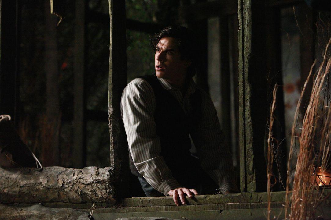 Damon (Ian Somerhalder) kann nicht glauben, dass sein eigener Vater ihn und seinen Bruder erschossen haben soll ... - Bildquelle: Warner Bros. Television