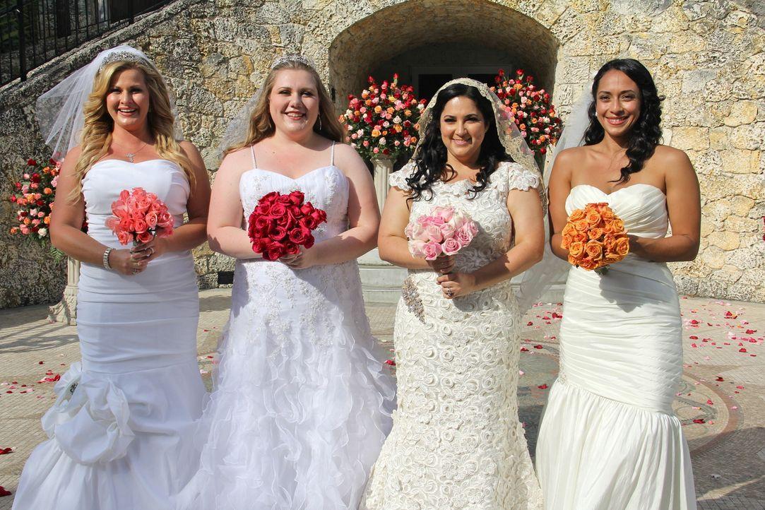 Jede der vier Bräute glaubt, die perfekte Hochzeit organisiert zu haben, doch wer wird auch die Konkurrenz davon überzeugen können: Kimberly (l.), I... - Bildquelle: Richard Vagg DCL