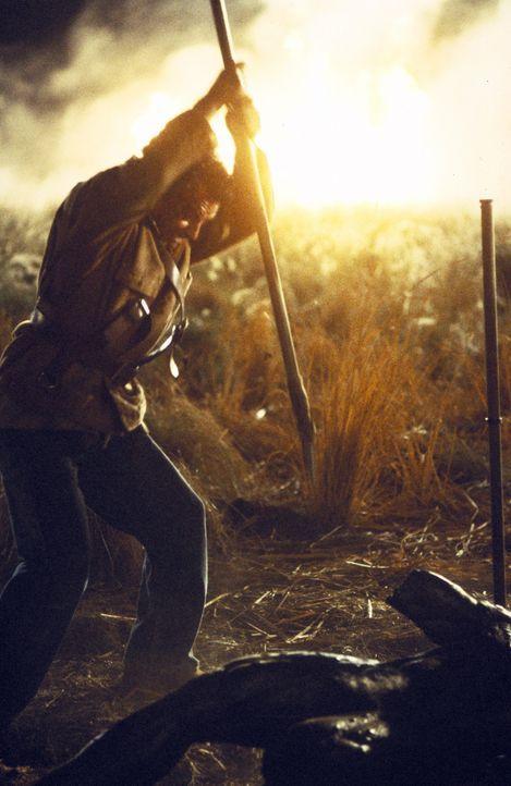 Nach dem Tod seines Sohnes hat der Farmer Taggart (Ray Wise) nichts mehr zu verlieren - und so wird er der Erste, vor dem der Creeper sich fürchtet... - Bildquelle: Kinowelt GmbH