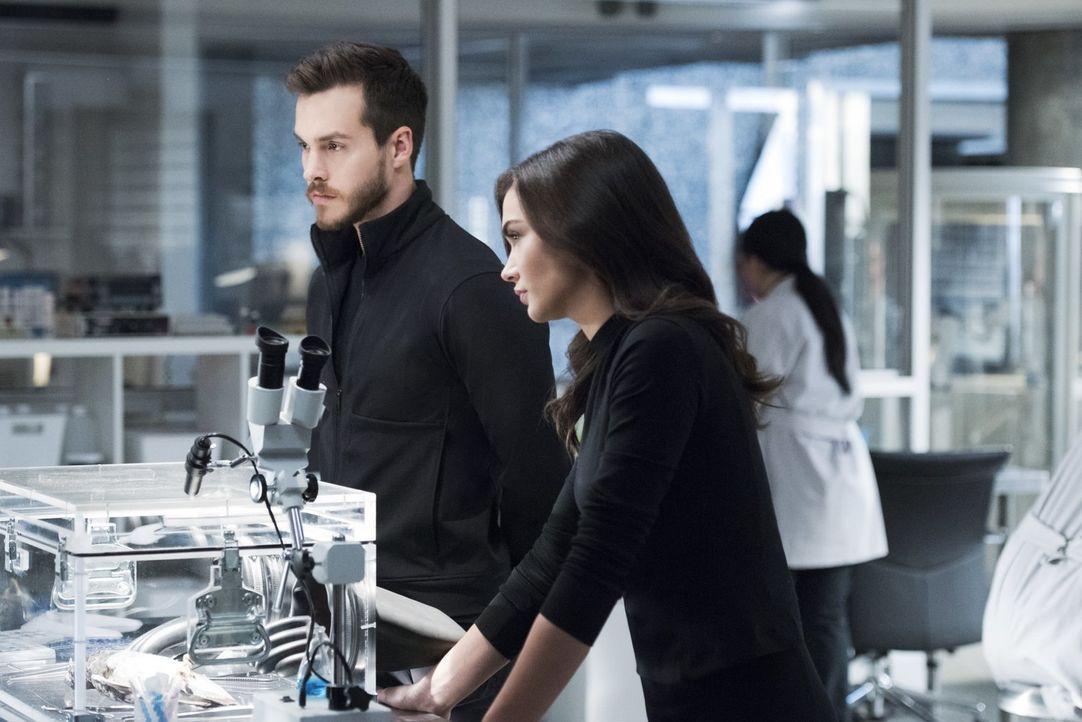 Werden sich Mon-El (Chris Wood, l.) und Imra (Amy Jackson, r.) mit Kara auf ein Vorgehen gegen die neue Bedrohung durch Pestilence einigen können? - Bildquelle: 2017 Warner Bros.