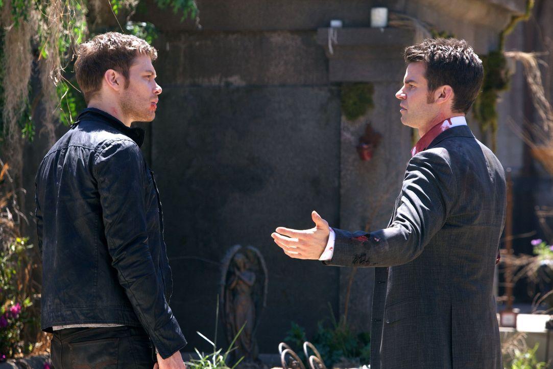 Klaus und Elijah suchen nach dem Baby - Bildquelle: Warner Bros. Entertainment Inc.