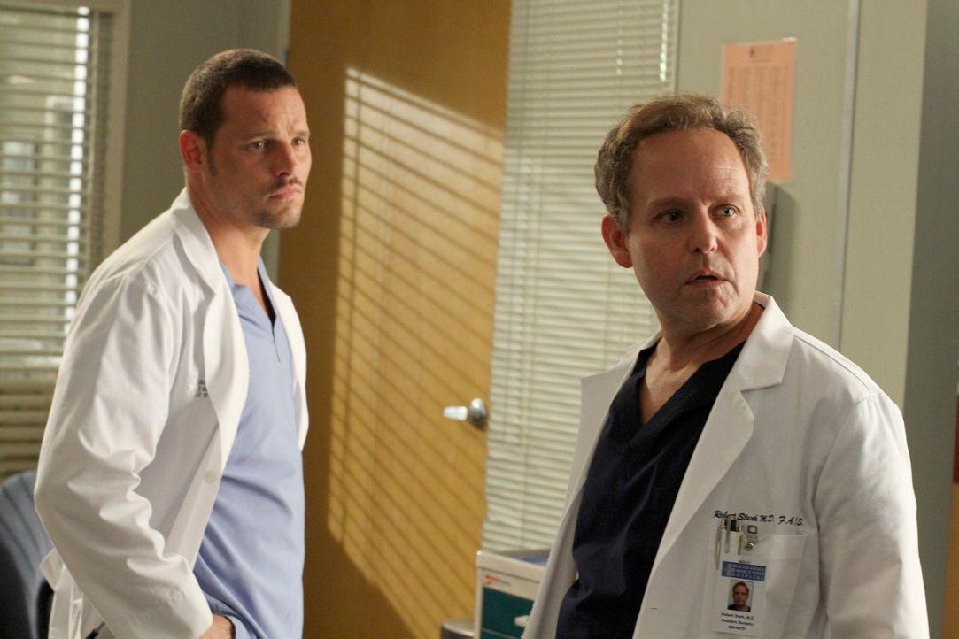 Arizonas Nachfolger Dr. Phil Stark (Peter MacNicol, r.) scheint ein unangenehmer Geselle zu sein. Er versucht, Alex' (Justin Chambers, l.) brilliant... - Bildquelle: ABC Studios