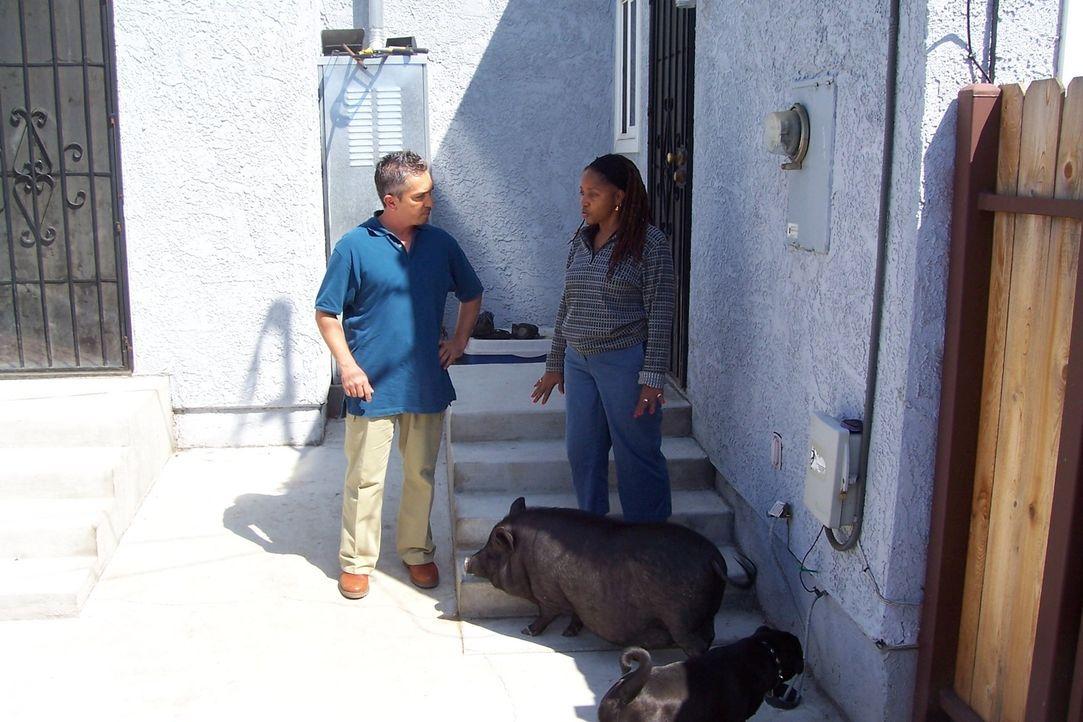 Die Psychologin Charlene (r.) ist Expertin auf dem Gebiet des menschlichen Verhaltens,  doch ihr Hund Boo ist für sie ein Buch mit sieben Siegeln. K... - Bildquelle: Rive Gauche Intern. Television