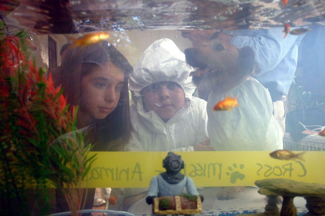 Haben eine große Leidenschaft: Laura (Emma Lockhart, l.) und Ace Ventura Jr. (Josh Flitter, r.) lieben den Zoo und alle seine Tiere ...